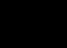 Waaiers holografisch goud zwart (6st) Meri Meri