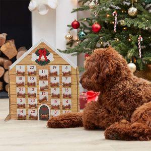 Adventskalender voor huisdier Merry Everything Ginger Ray