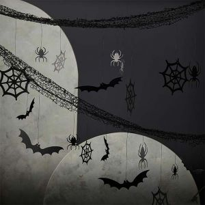 Backdrop spinnenweb Fright Night Ginger Ray