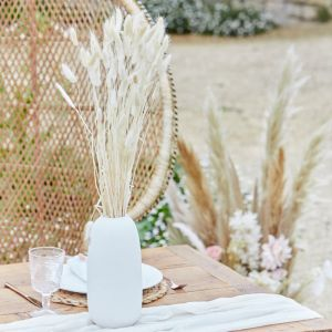 Droogbloemen Bunny Tails off white A Touch of Pampas