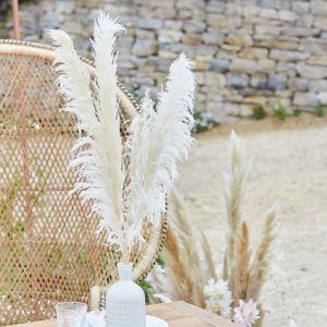 Pampasgras takken bleached A Touch of Pampas (5st)