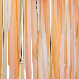 Backdrop streamers Mix it Up Peach Ginger Ray