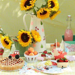 Cupcake Kit On The Farm Meri Meri