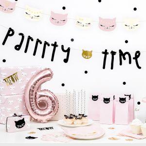 Slinger Parrrty Time Cat Collection