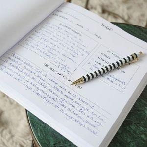 Mijn 9 maanden boek Bonjour to You