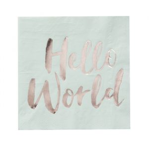 Hello World Babyshower Servetten mint (20st) Ginger Ray