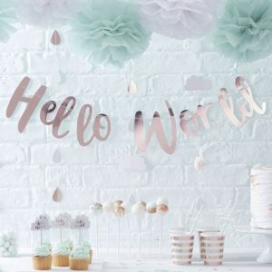 Hello World Babyshower Slinger roségoud Ginger Ray