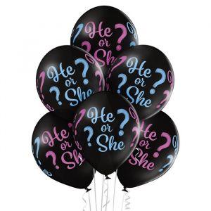Ballonnen He or She? (6st)