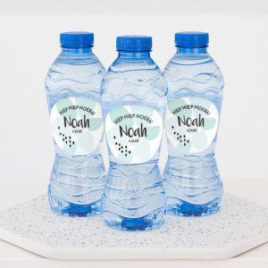 Flesje water kinderfeestje mint