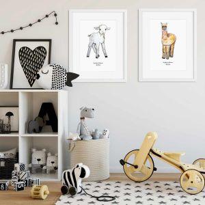 Aquarel poster alpaca illustratie door Sophie de Ruiter