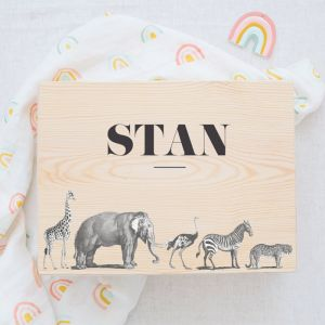 Memorybox baby animal party