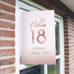 Raambord verjaardag hello 18
