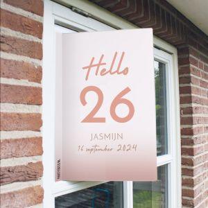Raambord verjaardag hello leeftijd