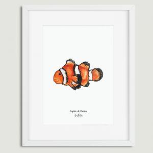 Aquarel illustratie nemo door Sophie de Ruiter