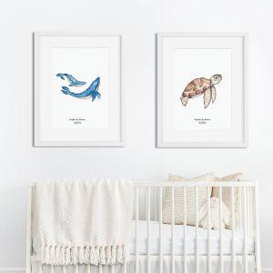Aquarel illustratie walvis door Sophie de Ruiter